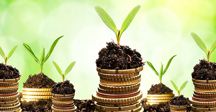 grow-your-wealth